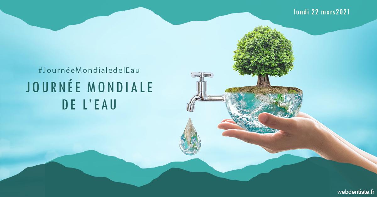 https://dr-madar-fabrice.chirurgiens-dentistes.fr/Journée de l'eau 1